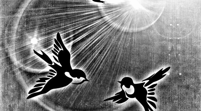 peace-dove-687527_1280