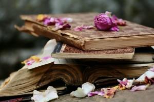 books-2447393_960_720